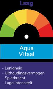 AquaVitaal zwembad Ermelo